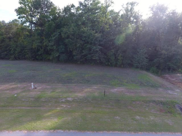 111 Paradise Acres Drive, Ernul, NC 28527 (MLS #100079680) :: Century 21 Sweyer & Associates