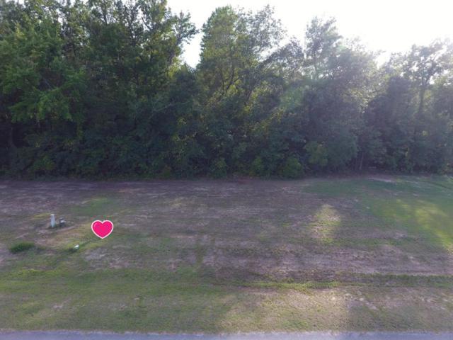115 Paradise Acres Drive, Ernul, NC 28527 (MLS #100079972) :: Century 21 Sweyer & Associates