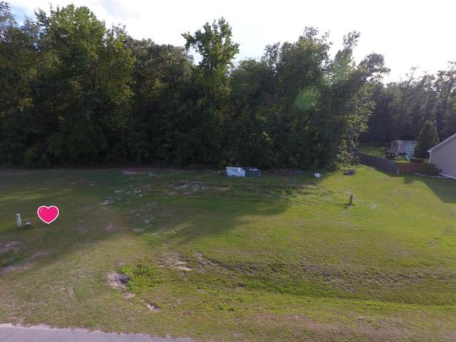 119 Paradise Acres Drive, Ernul, NC 28527 (MLS #100079977) :: Century 21 Sweyer & Associates
