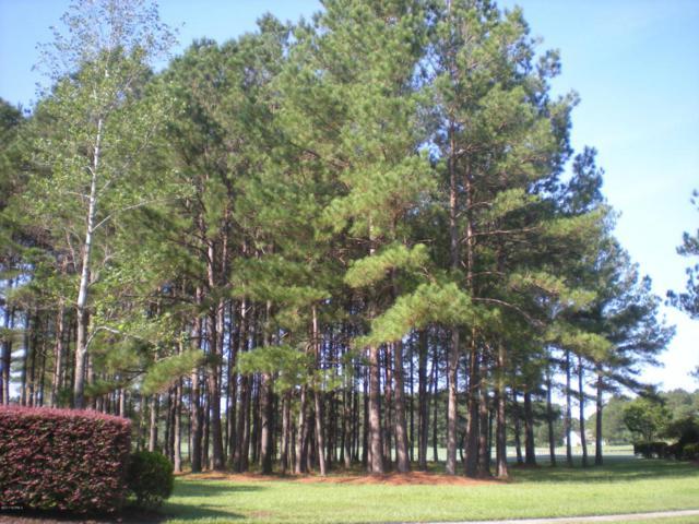401 N Crow Creek Drive NW, Calabash, NC 28467 (MLS #100080034) :: Century 21 Sweyer & Associates