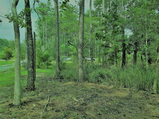 111 Queen Annes Lane, Beaufort, NC 28516 (MLS #100082133) :: Harrison Dorn Realty