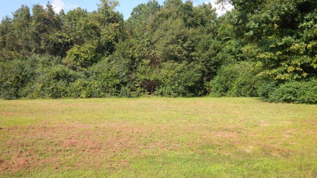 Lot #85 Challenge Club Drive, Clinton, NC 28328 (MLS #100082716) :: Century 21 Sweyer & Associates