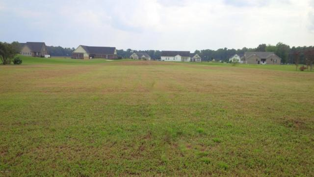 Lot #80 Challenge Club Drive, Clinton, NC 28328 (MLS #100082724) :: Century 21 Sweyer & Associates