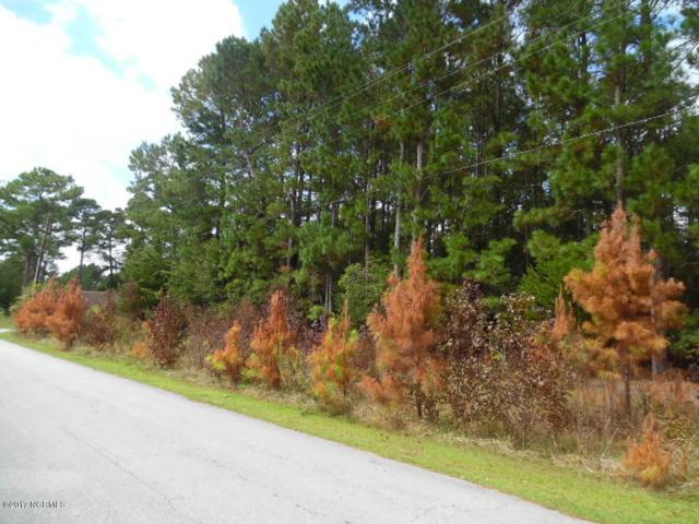 113 Vandergrift Drive, Jacksonville, NC 28540 (MLS #100083438) :: Century 21 Sweyer & Associates