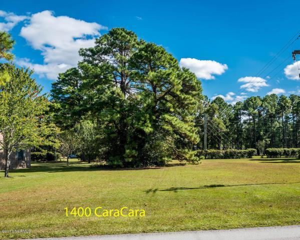 1400 Caracara Drive, New Bern, NC 28560 (MLS #100084623) :: Donna & Team New Bern