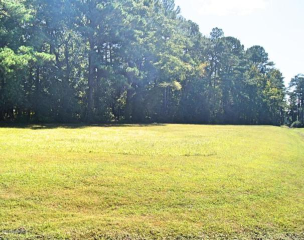Lot 66 Winfield Lane, Pinetown, NC 27865 (MLS #100085230) :: Century 21 Sweyer & Associates