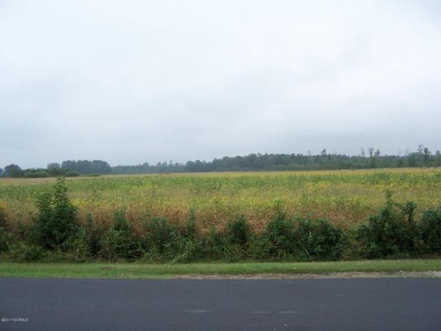 0 County Home Road, Ayden, NC 28513 (MLS #100085815) :: The Pistol Tingen Team- Berkshire Hathaway HomeServices Prime Properties