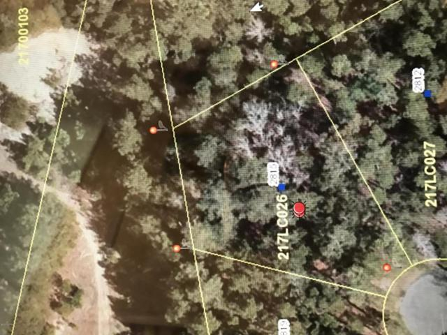 2815 Island Drive SE, Bolivia, NC 28422 (MLS #100086349) :: Coldwell Banker Sea Coast Advantage