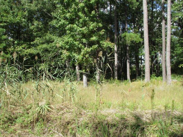 Lot #21 Batemans Creek Road, Belhaven, NC 27810 (MLS #100086402) :: Century 21 Sweyer & Associates