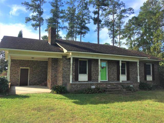 255 Foreman Lane, Belhaven, NC 27810 (MLS #100086567) :: Coldwell Banker Sea Coast Advantage