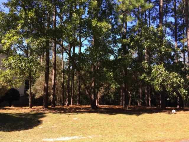 3870 White Blossom Circle, Southport, NC 28461 (MLS #100086623) :: RE/MAX Essential