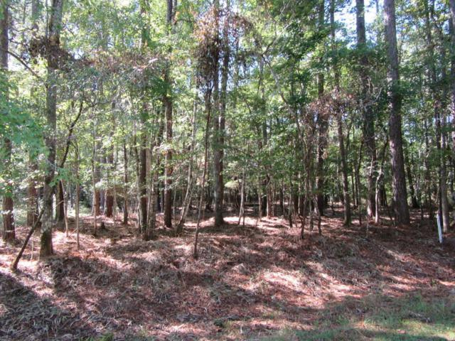603 Peterson Place, Oriental, NC 28571 (MLS #100086943) :: RE/MAX Essential