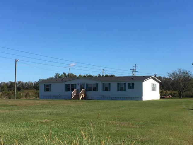 3032 Bowers Road, Bethel, NC 27812 (MLS #100087024) :: The Pistol Tingen Team- Berkshire Hathaway HomeServices Prime Properties