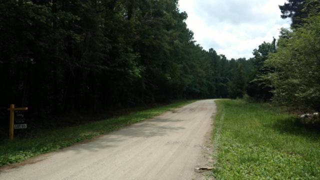 Lot 52 Pond Road, Rocky Point, NC 28457 (MLS #100087648) :: Century 21 Sweyer & Associates
