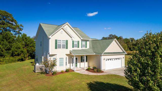 517 Davidson Drive, Newport, NC 28570 (MLS #100087859) :: Century 21 Sweyer & Associates