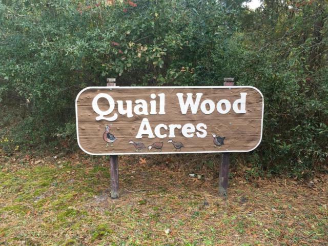 218 Quailwood Court, Cape Carteret, NC 28584 (MLS #100089934) :: Courtney Carter Homes