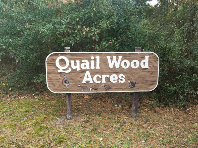 202 Quailwood Court, Cape Carteret, NC 28584 (MLS #100089937) :: Courtney Carter Homes