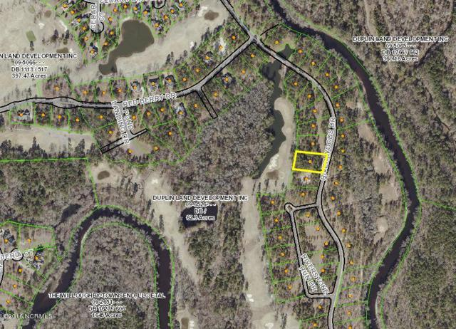236 River Woods Drive, Wallace, NC 28466 (MLS #100090498) :: The Keith Beatty Team