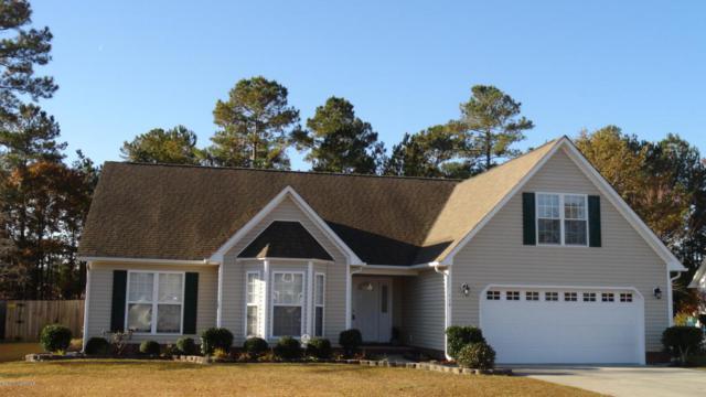 110 Sand Run Road, Havelock, NC 28532 (MLS #100091491) :: RE/MAX Essential