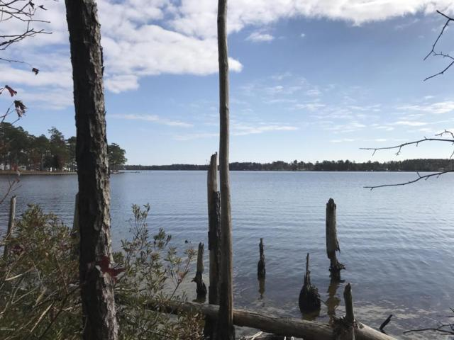 Lot 28 Pointe Harbor Drive, Belhaven, NC 27810 (MLS #100092851) :: The Pistol Tingen Team- Berkshire Hathaway HomeServices Prime Properties