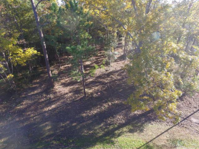 334 Chadwick Shores Drive, Sneads Ferry, NC 28460 (MLS #100093198) :: Harrison Dorn Realty
