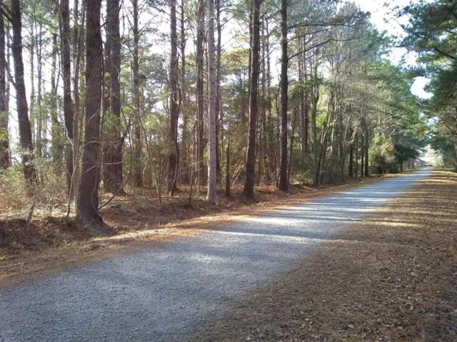 809 Sail Haven Drive, Oriental, NC 28571 (MLS #100094648) :: Courtney Carter Homes