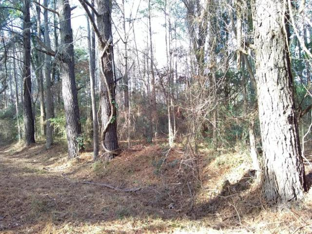 802 Sail Haven Drive, Oriental, NC 28571 (MLS #100094682) :: Courtney Carter Homes