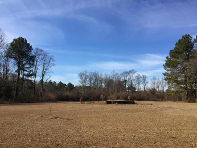 1084 Mitchell Loop Road, Roseboro, NC 28382 (MLS #100096362) :: Courtney Carter Homes