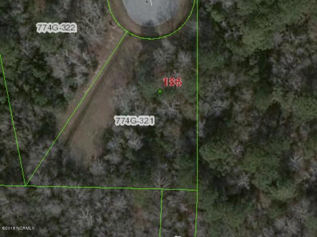 186 Snow Goose Lane, Sneads Ferry, NC 28460 (MLS #100096743) :: The Keith Beatty Team