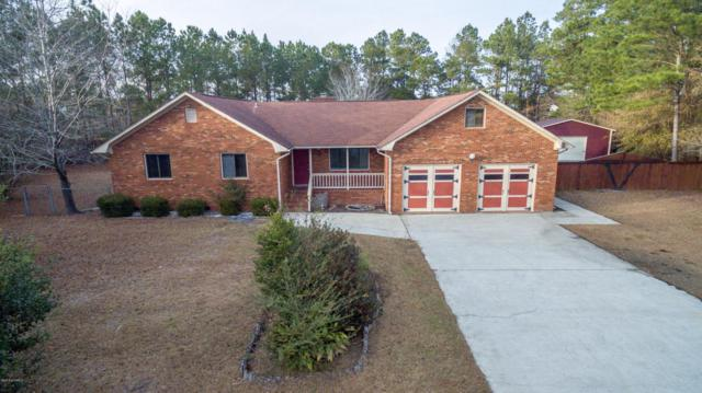 519 Southampton Place, Leland, NC 28451 (MLS #100097208) :: The Keith Beatty Team