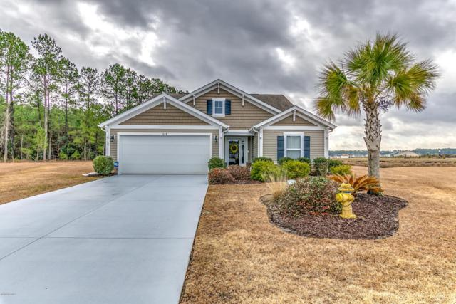 678 Iredel Court, Calabash, NC 28467 (MLS #100097541) :: The Keith Beatty Team