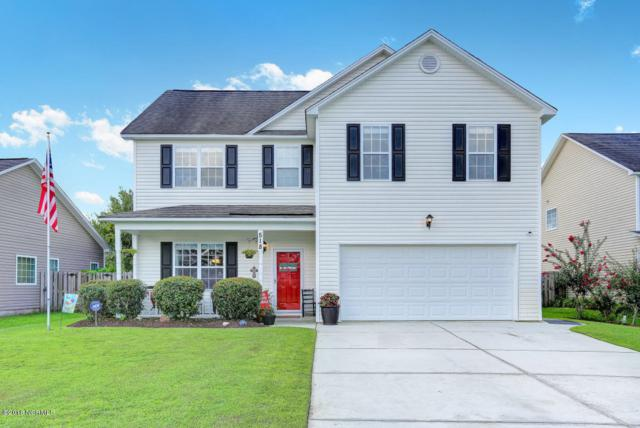518 Vallie Lane, Wilmington, NC 28412 (MLS #100097959) :: RE/MAX Essential
