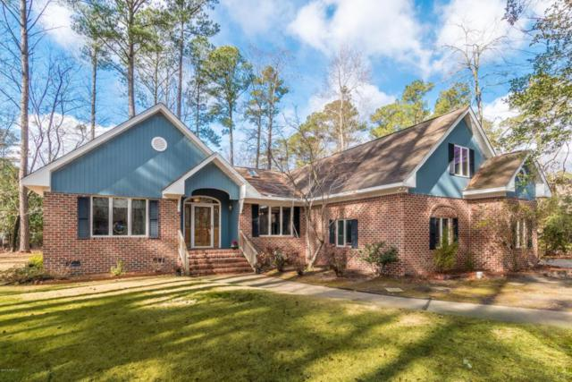 103 Delaware Drive, Chocowinity, NC 27817 (MLS #100099033) :: The Keith Beatty Team