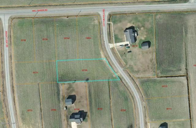 4 B Cotton Field Road, Kinston, NC 28504 (MLS #100099115) :: Thirty 4 North Properties Group