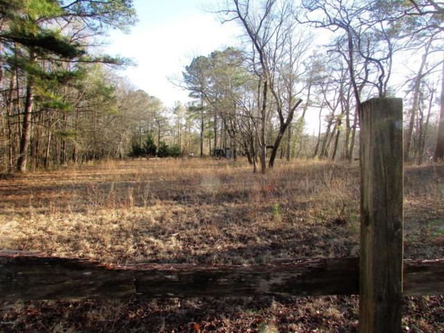 1 Beaver Trail Drive, Burgaw, NC 28425 (MLS #100099486) :: The Keith Beatty Team