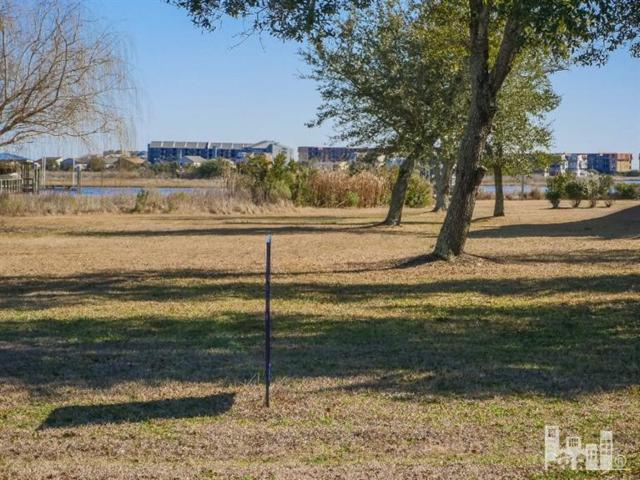 156 Big Hammock Point Road, Sneads Ferry, NC 28460 (MLS #100100368) :: Courtney Carter Homes