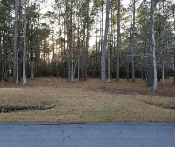 114 Hidden Harbor Lane, Beaufort, NC 28516 (MLS #100101352) :: Century 21 Sweyer & Associates