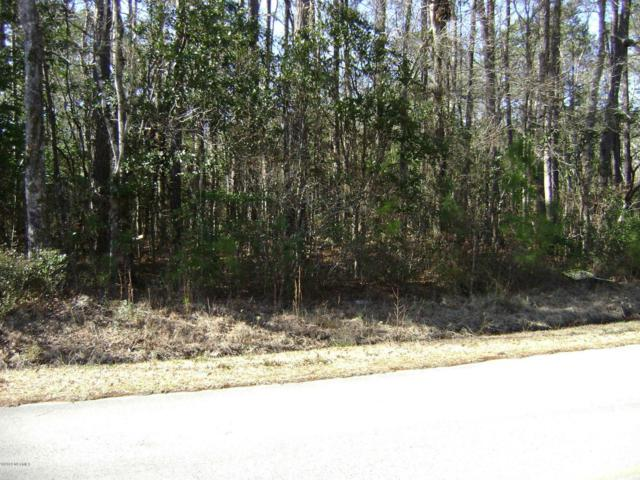 241 Becton Road, Havelock, NC 28532 (MLS #100101521) :: Courtney Carter Homes