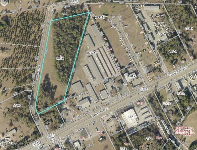 1025 Cedar Point Boulevard, Cedar Point, NC 28584 (MLS #100101600) :: Courtney Carter Homes
