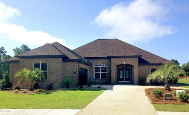 525 Sea Holly Drive Lot 226, Castle Hayne, NC 28429 (MLS #100101902) :: RE/MAX Essential