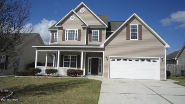 361 Hanna Drive, Wilmington, NC 28412 (MLS #100101976) :: Coldwell Banker Sea Coast Advantage