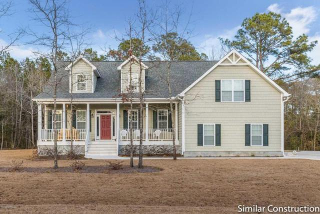 35 E Loon Court, Hampstead, NC 28443 (MLS #100102059) :: RE/MAX Essential