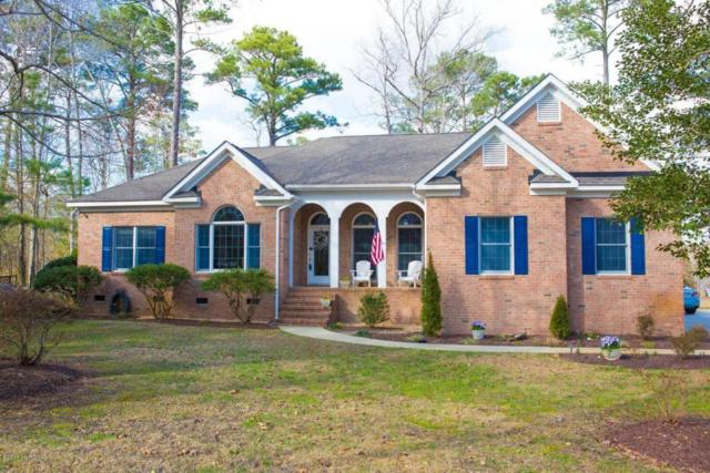 101 Waters Edge Drive, Chocowinity, NC 27817 (MLS #100102130) :: The Pistol Tingen Team- Berkshire Hathaway HomeServices Prime Properties