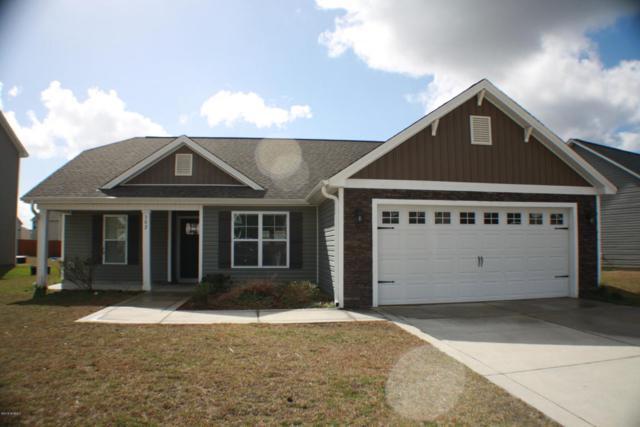 302 Merin Height Road, Jacksonville, NC 28546 (MLS #100102195) :: RE/MAX Essential