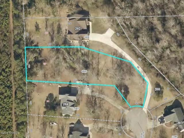 202 Heron Woods Drive, Beaufort, NC 28516 (MLS #100102206) :: RE/MAX Essential