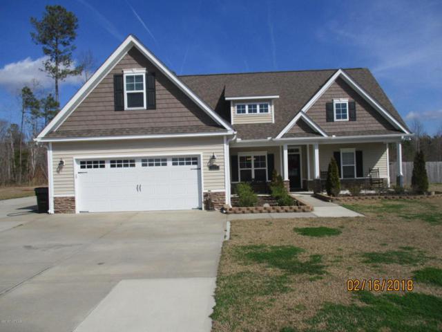 425 Stanford Court, Maysville, NC 28555 (MLS #100102246) :: Courtney Carter Homes