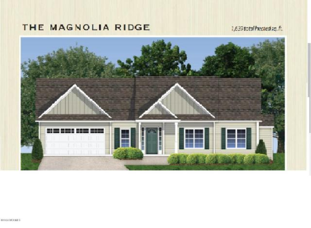 208 Penster Court, Richlands, NC 28574 (MLS #100102339) :: RE/MAX Essential