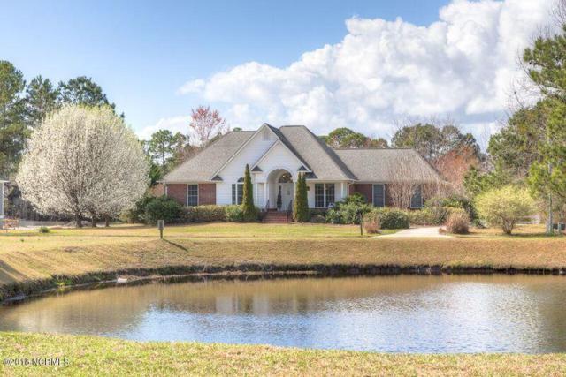 3325 Ammons Drive, Wilmington, NC 28405 (MLS #100102950) :: David Cummings Real Estate Team