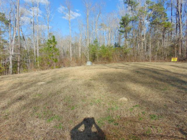Lot 16 Fawn Court, Blounts Creek, NC 27814 (MLS #100103379) :: The Keith Beatty Team