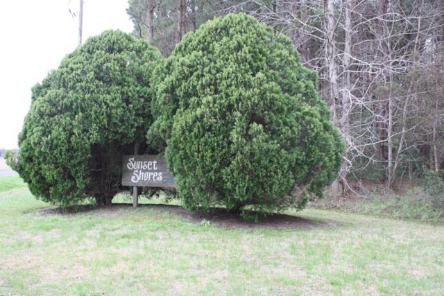 21 Teal Road, Merritt, NC 28556 (MLS #100104154) :: The Keith Beatty Team